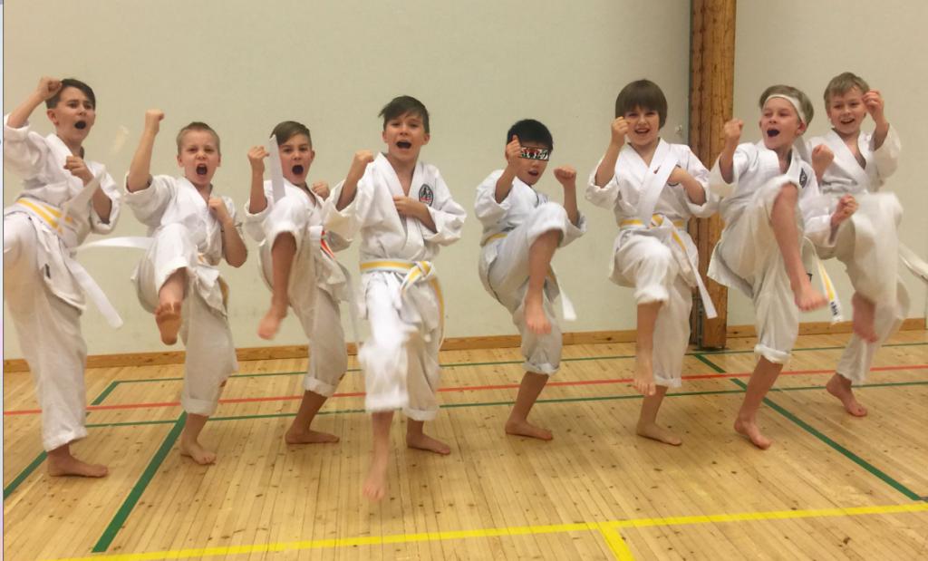 Bushido Karate Oulu - Bushido Karatekoulu Oulu